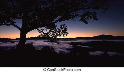 appalachian, מעורפל, מעל, עלית שמש, הרים