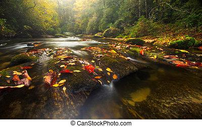 appalachian, colores, río, otoño