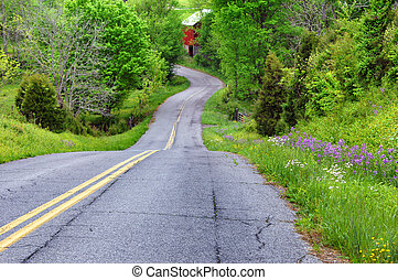 appalachian, curva, strada