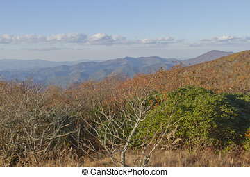 Appalachian Mountains View