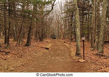 appalachian, nemzeti park, nyom, shenandoah