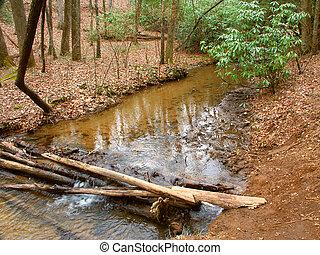 Appalachian Trail in Georgia - Appalachian Trail crosses a...