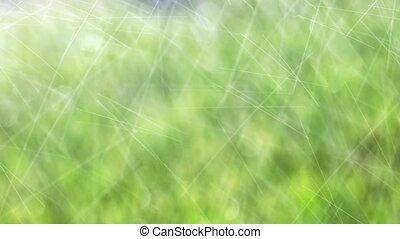 appareils arrosage, arrosage, pelouse