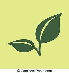appartamento, aroma., natura, sano, mentolo, leaf., mette foglie, erbaceo, fresco, menta, plant., menta verde
