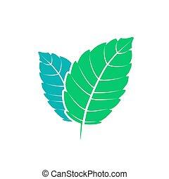 appartamento, aroma., natura, sano, mentolo, leaf., vettore, verde, mette foglie, erbaceo, fresco, menta, plant., menta verde