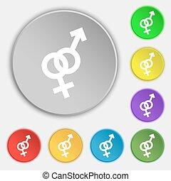 appartamento, buttons., segno., vettore, otto, femmina, simbolo maschio, icona