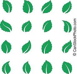 appartamento, cibo, fattoria, foglia, foglie, leaf., leaves., vegan, eco, vettore, etichetta, menta piperita, fresco, erbaceo, pianta verde, menta, menta verde, melissa