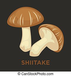 appartamento, fungo commestibile, shiitake, isolato,...