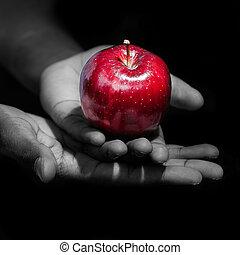 appel, fruit, holdingshanden, verboden, rood