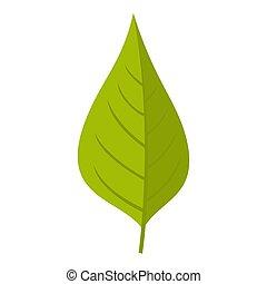 appelboom, groen blad, pictogram, vrijstaand