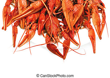 red boiled crawfish on a white background