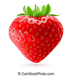 Appetizing fresh strawberry isolated on white background. Realistic illustration