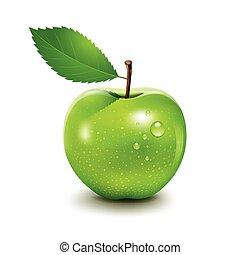 Apple and leaf, Vector illustration