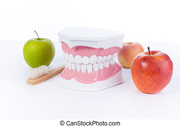 Apple and model of a human teeth / dental health