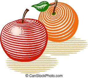 Illustration in woodcut style of an apple and an orange.