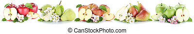 Apple and pear collection set apples pears fruit sliced in a row fruits isolated