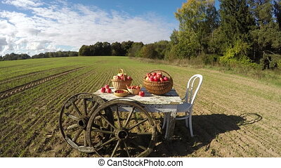 Apple baskets on old white table on autumn farm field and...