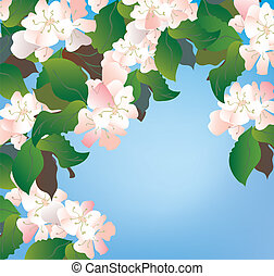 Apple blossom background with sky and leaves