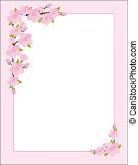 Apple Blossom Border - A border, frame or background ...