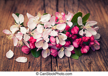 Apple blossom flowers on a retro wooden background