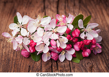Apple blossom flowers on a vintage wooden background