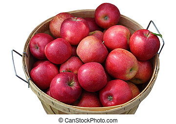 Bushel of red apples isolated on white