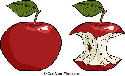 Apple and apple core cartoon vector illustration