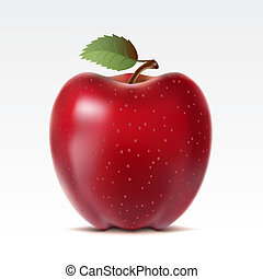 Apple - Red apple on a white background