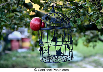 Apple escapes from the Cage