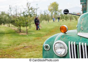 U-pick apple farm on one day in Autumn.