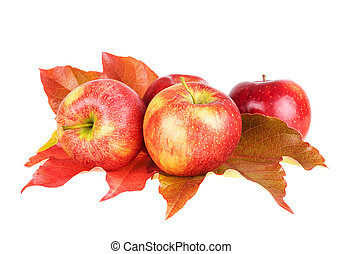 Apple fruits with autumn leaves isolated on white background