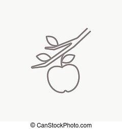 Apple harvest line icon.