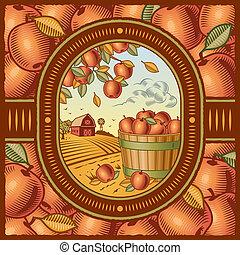 Apple harvest - Retro apple harvest in woodcut style. Vector...