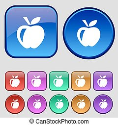 Apple icon sign. A set of twelve vintage buttons for your design. Vector