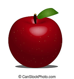 Apple Illustration - Apple illustration on a white...