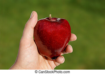 Apple in Hand Against Green - View of an apple in hand...