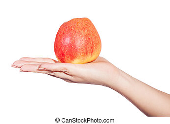 apple in hand isolated