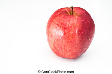 apple in white isolated