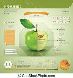 Apple infographics template green and orange design...