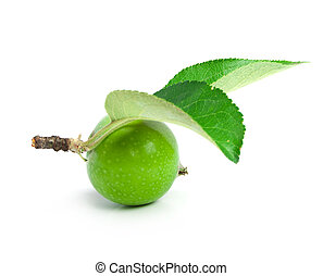 apple is green and two sheets on a branch are isolated