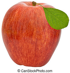 Apple isolated on the white