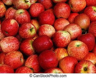 Apple - Fruit - Apple