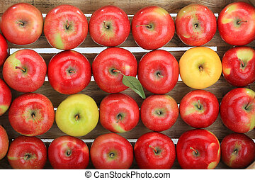 apple, red, yellow
