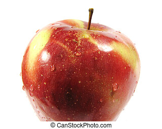 Apple Red-Yellow