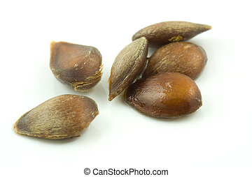Apple Seeds - A photo of some apple seeds set against a...