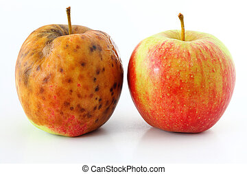 apple spoiled on white background Healthy and rotten apples...