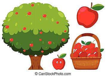 Apple Tree and Apple on White Background