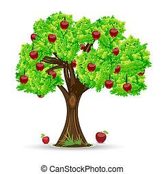 apple tree - illustration of apple tree on white background