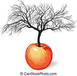 apple tree from fruit