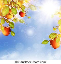 apple tree - illustration of apple tree over blue sky with...